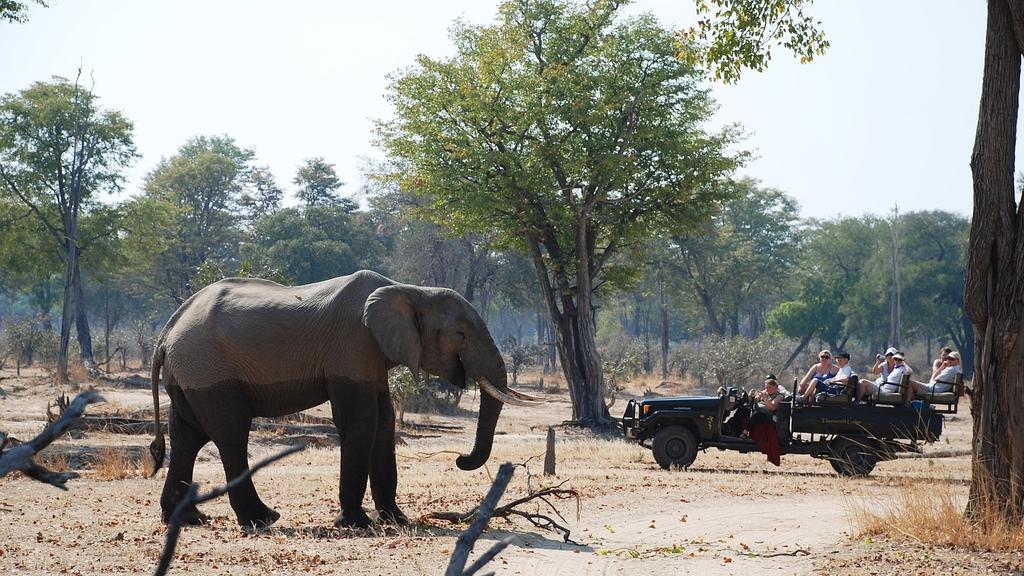 Header, Südmalawi & South Luangwa | Abendsonne Afrika