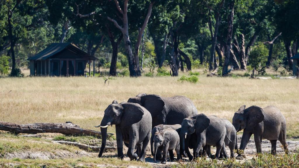 Blick auf das Davison's Camp in Simbabwe | Abendsonne Afrika