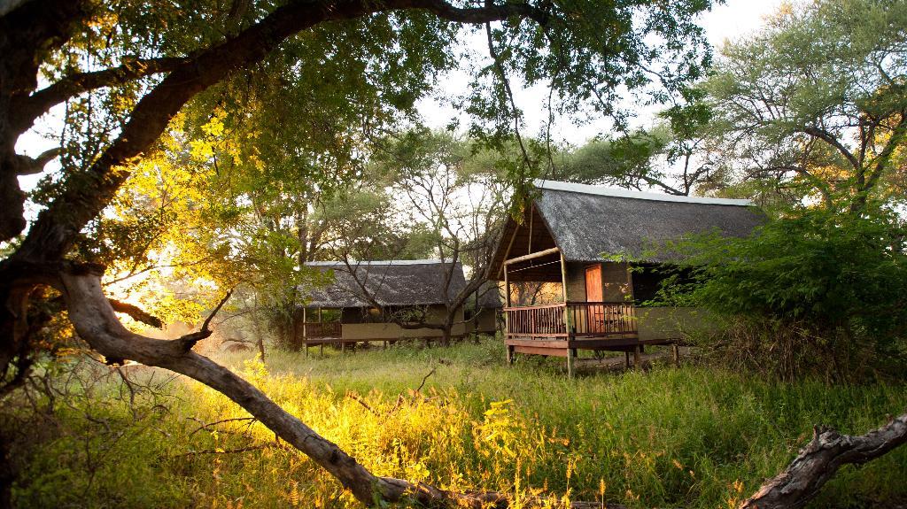 Blick auf das Makuleke Camp in Südafrika   Abendsonne Afrika
