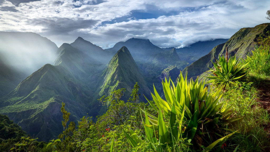 HEADER Die bunte Vielfalt La Réunions / La Réunion   Abendsonne Afrika
