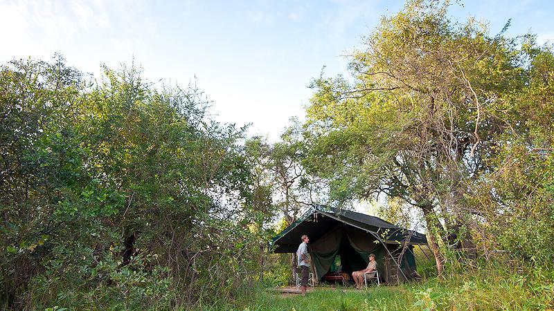 Karongwe Camp, Karongwe Konzession, Südafrika | Abendsonne Afrika