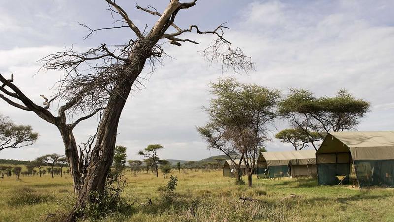 Blick auf das Bologonya Under Canvas Tented Camp in Tansania   Abendsonne Afrika