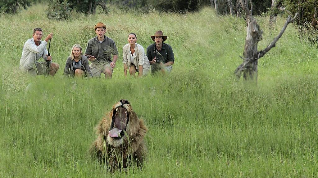 Header Abenteuer Wildnis | Abendsonne Afrika