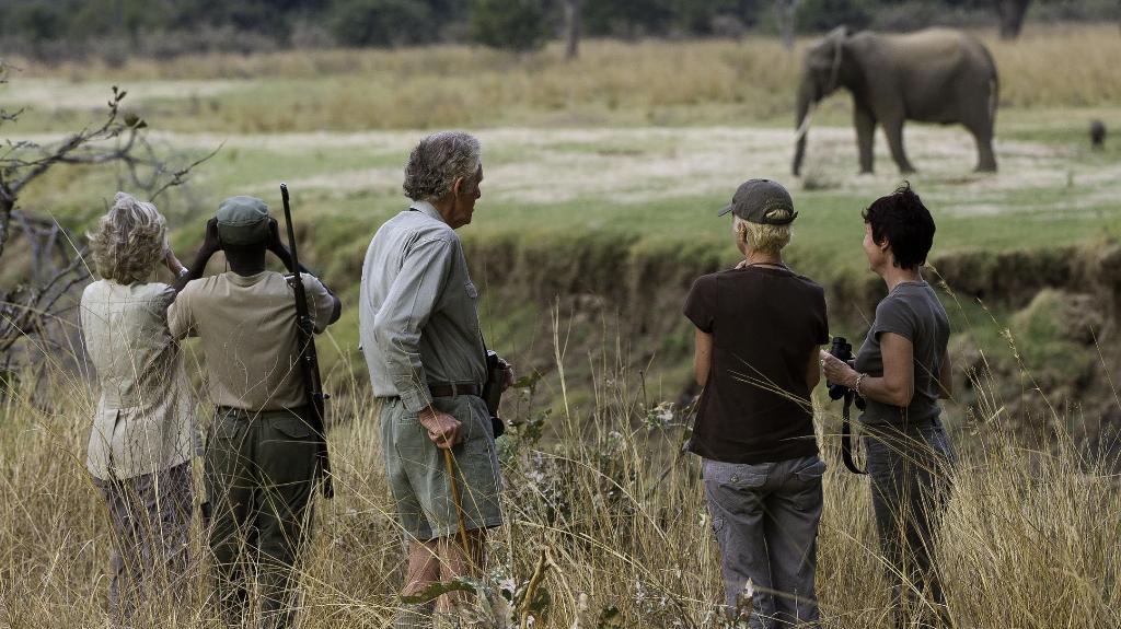 HEADER, Wildnis in Sambia, Sambia | Abendsonne Afrika