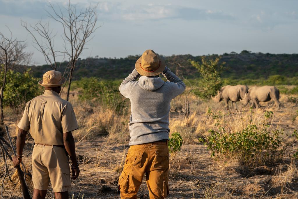 Bushwalk im Anderssons at Ongava in Namibia | Abendsonne Afrika