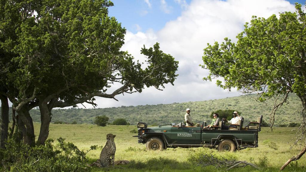 Safari im Kwandwe Game Reserve, Südafrika