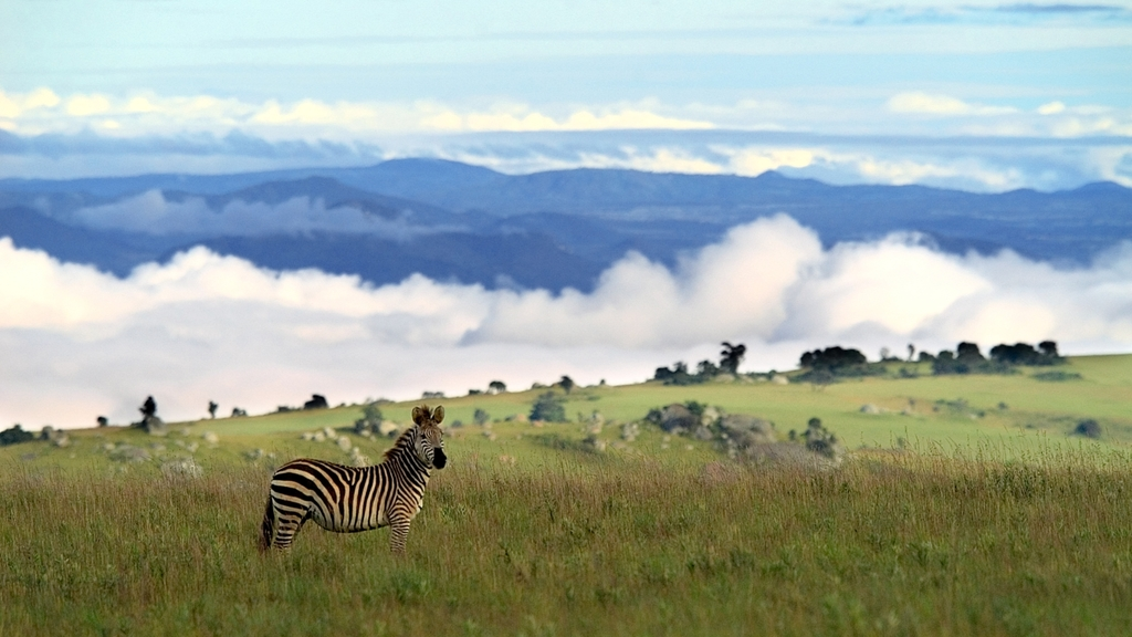 Header, Malawi intensiv & South Luangwa Nationalpark | Abendsonne Afrika