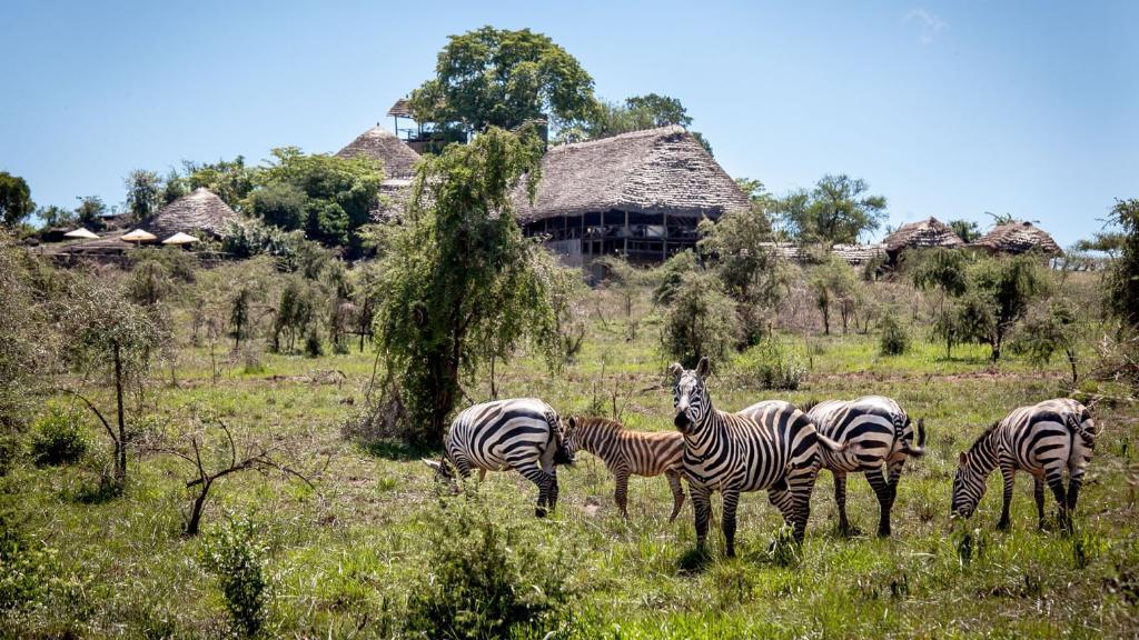 Blick auf die Semliki Safari Lodge in Uganda   Abendsonne Afrika
