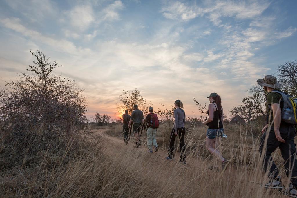 Walking Safari des Africa On Foot in Südafrika | Abendsonne Afrika