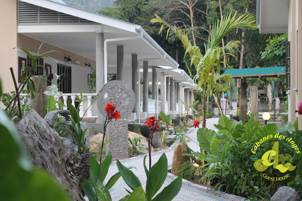 Garten des Cabanes des Anges auf den Seychellen | Abendsonne Afrika