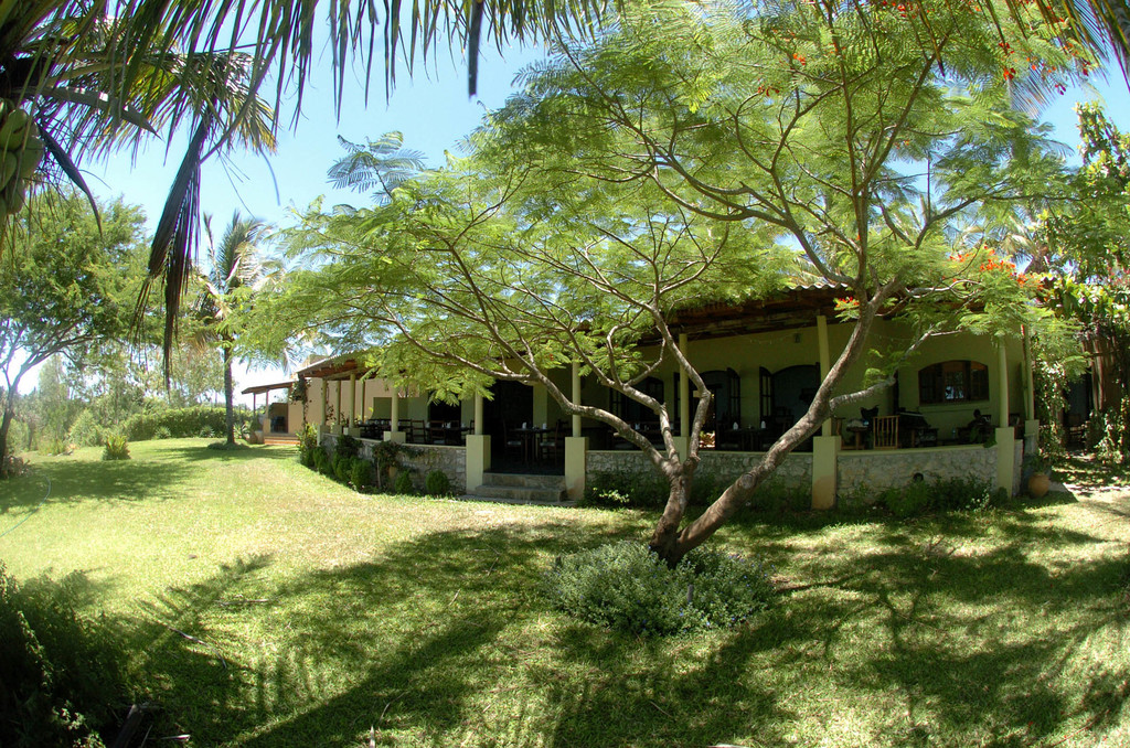 Garten des Casa Rex in Mosambik | Abendsonne Afrika