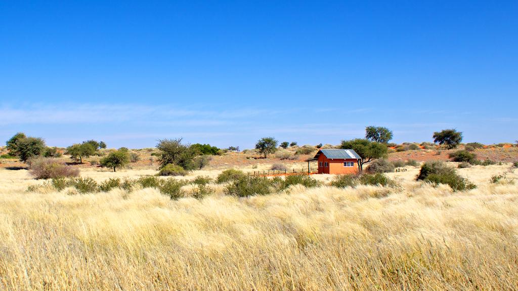 Umgebung der Bagatelle Bagatelle Kalahari Game Ranch in Namibia | Abendsonne Afrika