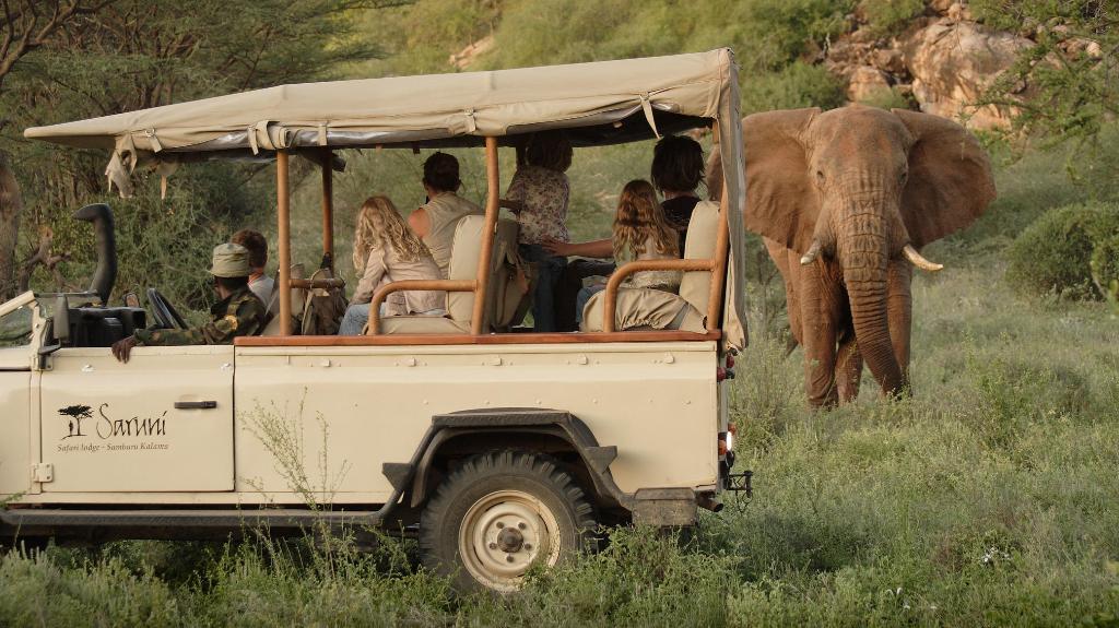 Safari im Saruni Rhino Camp   Abendsonne Afrika