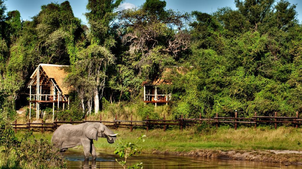 Blick auf die Savute Safari Lodge in Botswana | Abendsonne Afrika