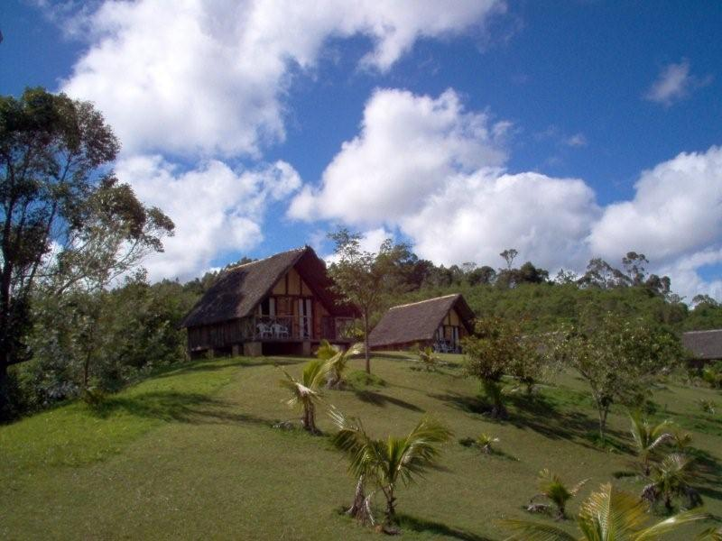 Garten der Eulophiella Lodge auf Madagaskar | Abendsonne Afrika