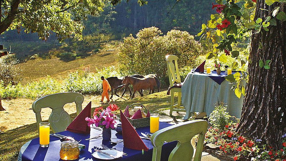 Frühstück im Forester's Arms Country Hotel in Swaziland/eSwatini | Abendsonne Afrika