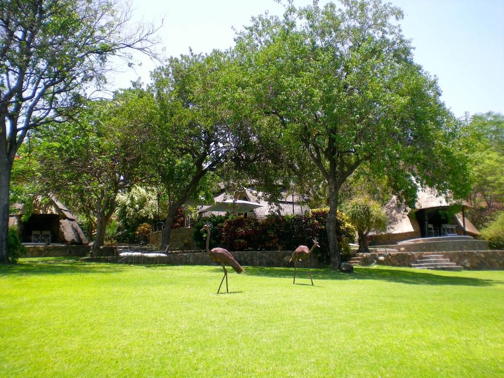 Gartenanlage der Hornbill Lodge in Simbabwe   Abendsonne Afrika