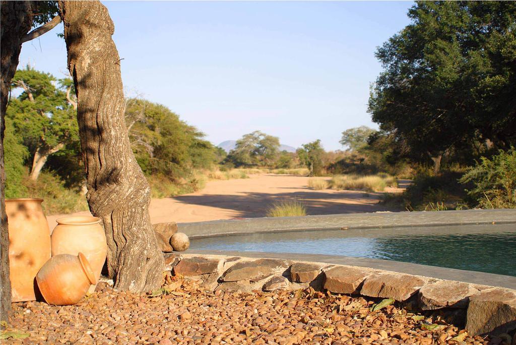 Ausblick vom Pool des Jongomero Camps in Tansania   Abendsonne Afrika