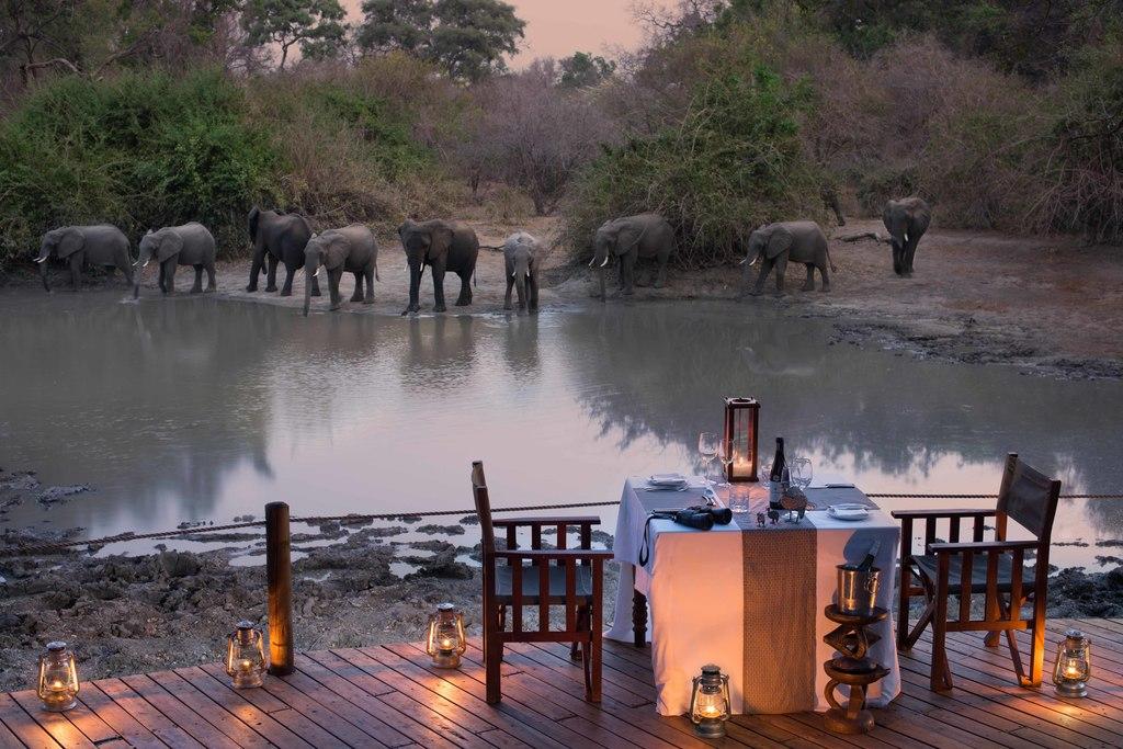 Dinner mit Elefanten im Kanga Camp in Simbabwe | Abendsonne Afrika