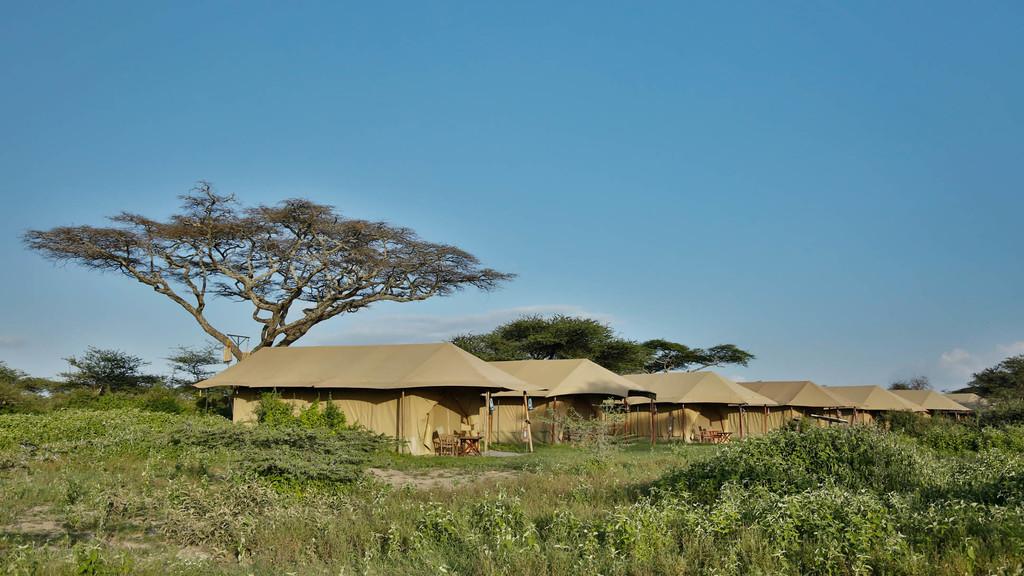Zelte des Kenzan Luxury Mobile Camps in Tansania   Abendsonne Afrika