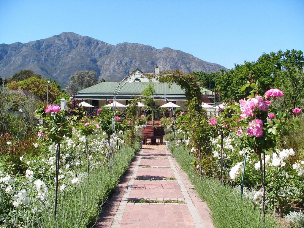 Garten des Klein Oliphants Hoek in Südafrika | Abendsonne Afrika