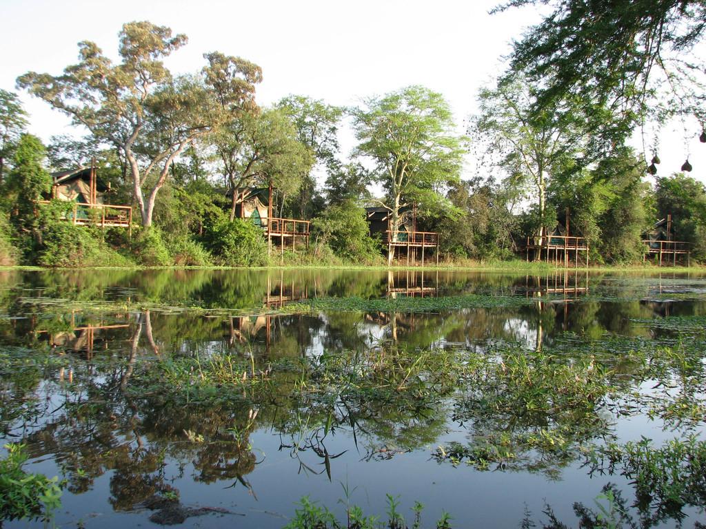 Machampane Fluss beim Machampane Wilderness Camp in Mosambik | Abendsonne Afrika