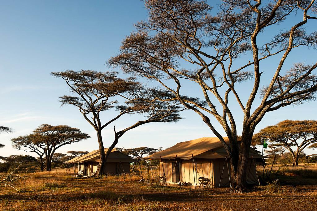 Zelte des Mara Under Canvas Tented Camp in Tansania   Abendsonne Afrika