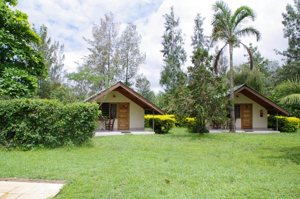 Garten der Meru View Lodge in Tansania | Abendsonne Afrika