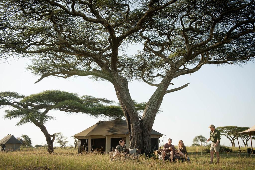 Zelte des Namiri Plains Camp in Tansania   Abendsonne Afrika