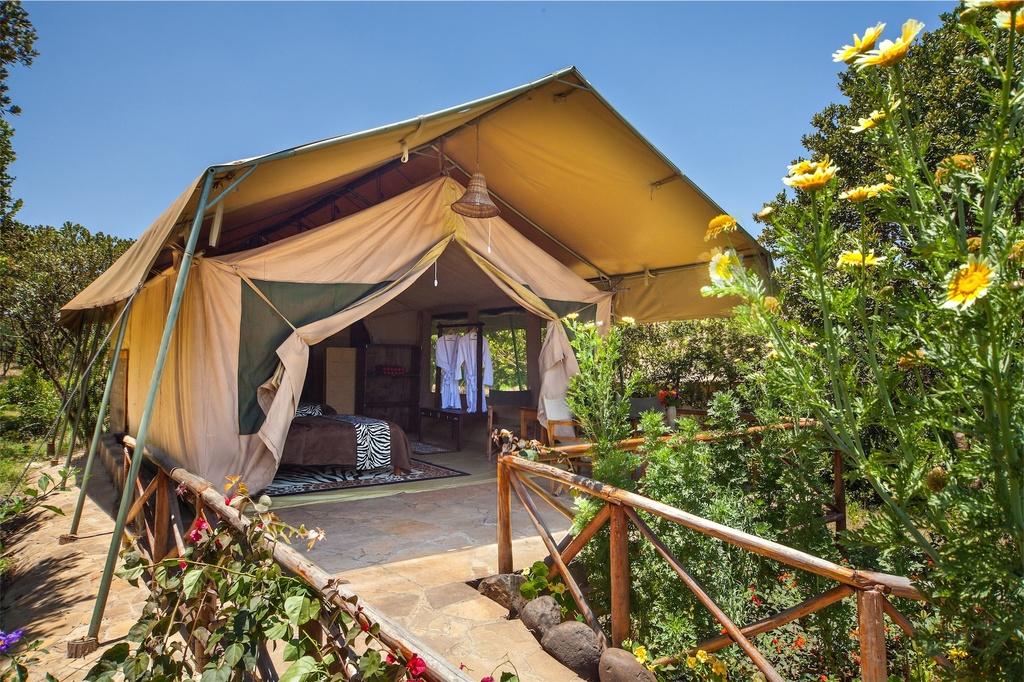 Aussenansicht der Luxus Zelt der Rhino Watch Lodge in Kenia   Abendsonne Afrika
