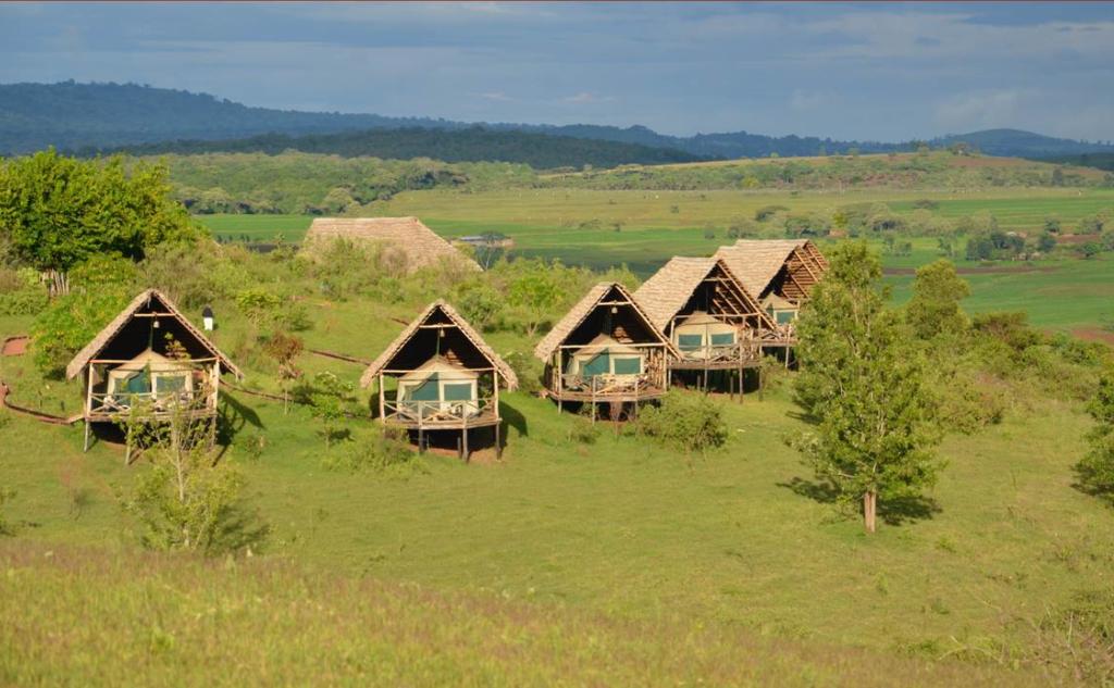 Zelte der Rhotia Valley Tented Lodge in Tansania | Abendsonne Afrika