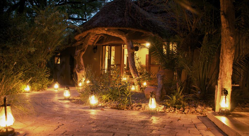 Eingangsbereich der Royal Tree Lodge in Botswana   Abendsonne Afrika