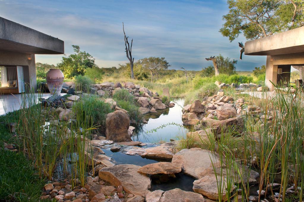 Bach in der Sabi Sabi Earth Lodge in Südafrika   Abendsonne Afrika