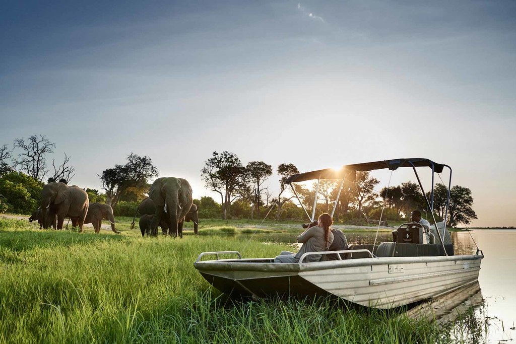 Wildbeobachtung per Boot der Sanctuary Chobe Chilwero Lodge in Botswana | Abendsonne Afrika