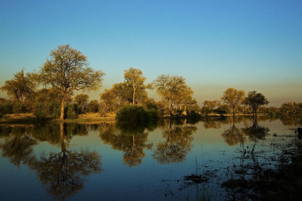 Ausblick vom Selinda Explorers Camp in Botswana | Abendsonne Afrika