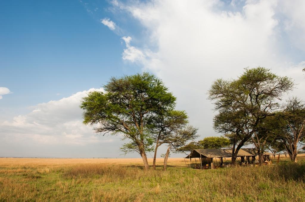 Landschaft des Serengeti Safari Camp im Serengeti Nationalpark in Tansania | Abendsonne Afrika