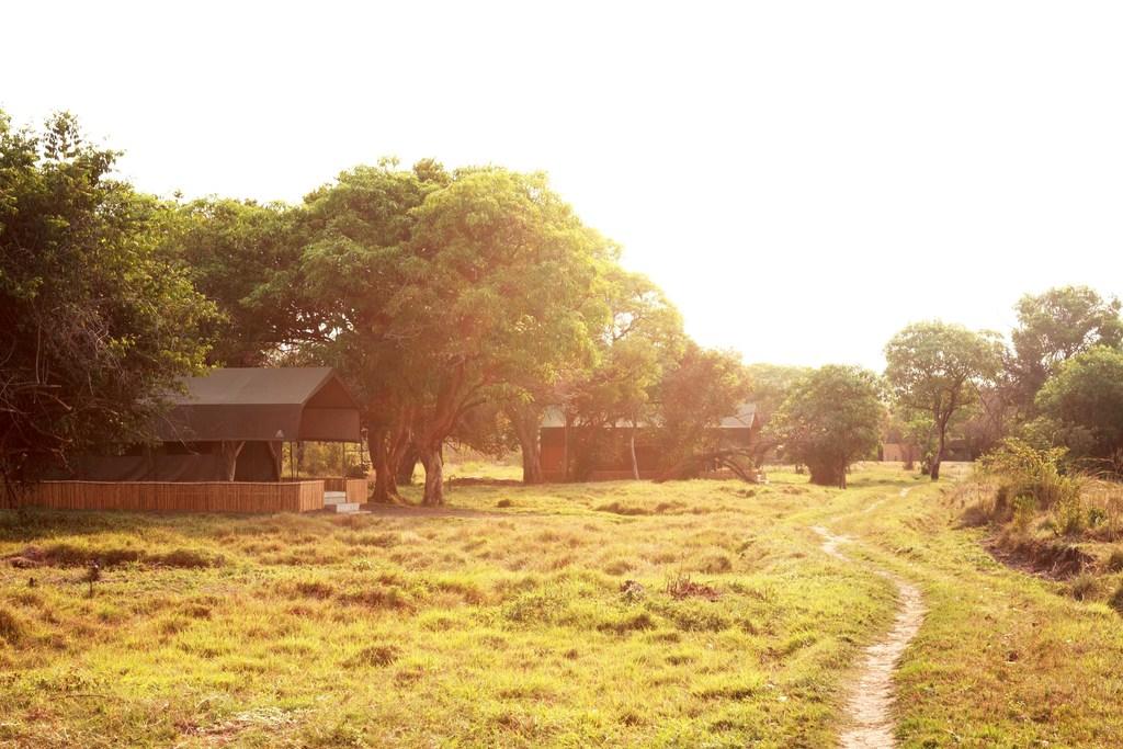 Außenbereich des Shoebill Island Camps in Sambia | Abendsonne Afrika