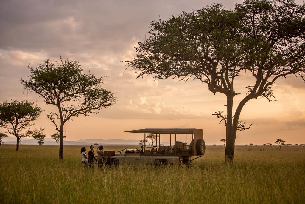 Wildbeobachtungsfahrt der Singita Faru Faru River Lodge in Tansania | Abendsonne Afrika