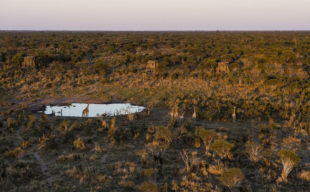 Luftaufnahme der Sky Beds in Botswana | Abendsonne Afrika