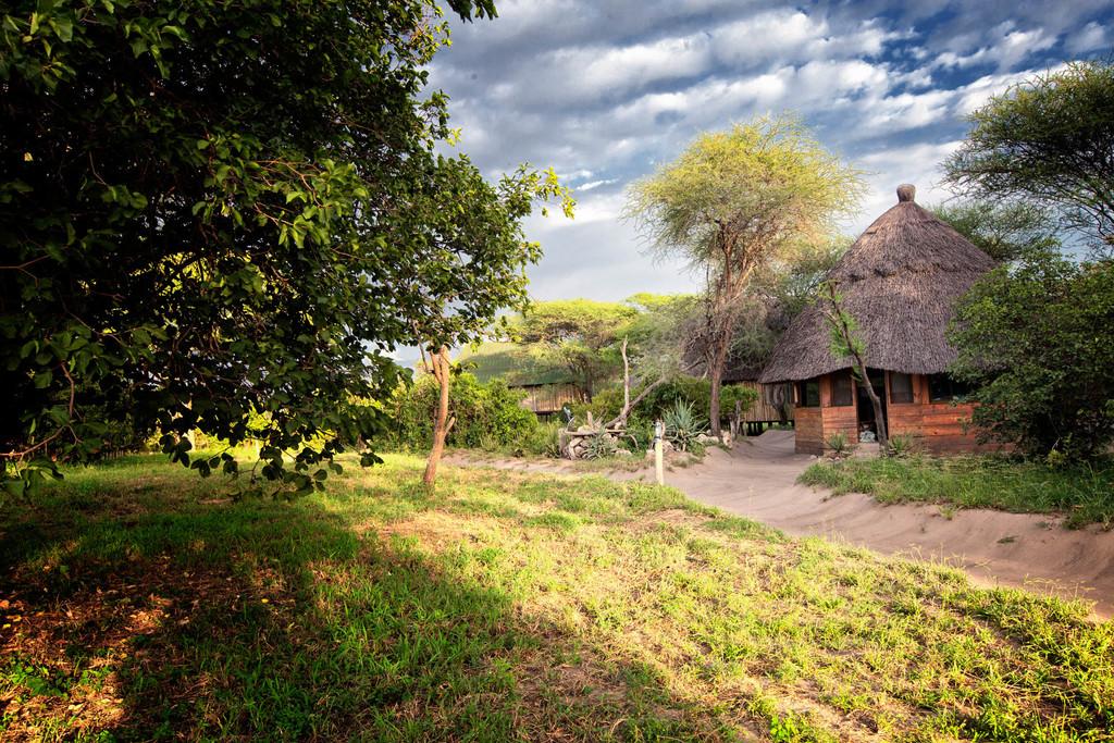 Anlage des Tarangire River Camp in Tansania   Abendsonne Afrika