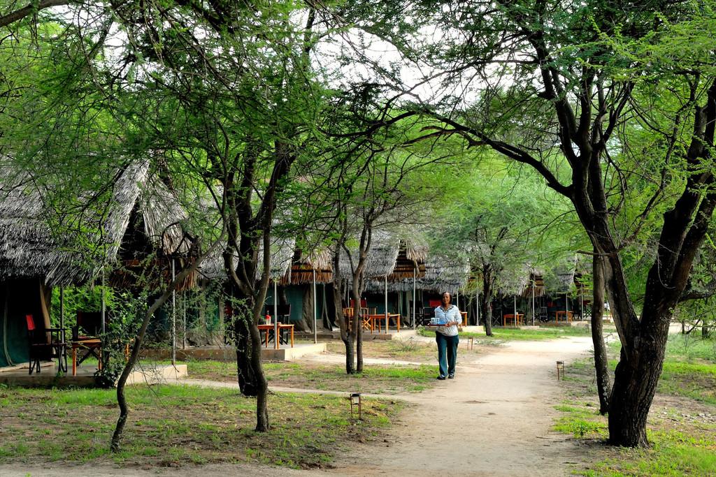 Anlage der Tarangire Safari Lodge in Tansania | Abendsonne Afrika