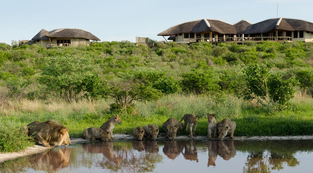 Außenansicht des Tau Pan Camps in Botswana | Abendsonne Afrika