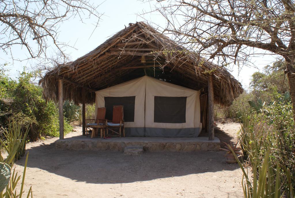 Zelt von außen im Tindiga Tented Camp in Tansania   Abendsonne Afrika
