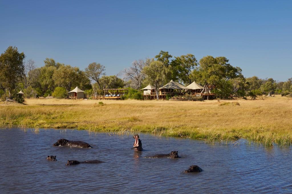 Nilpferde vor dem Tuludi Camp in Botswana | Abendsonne Afrika