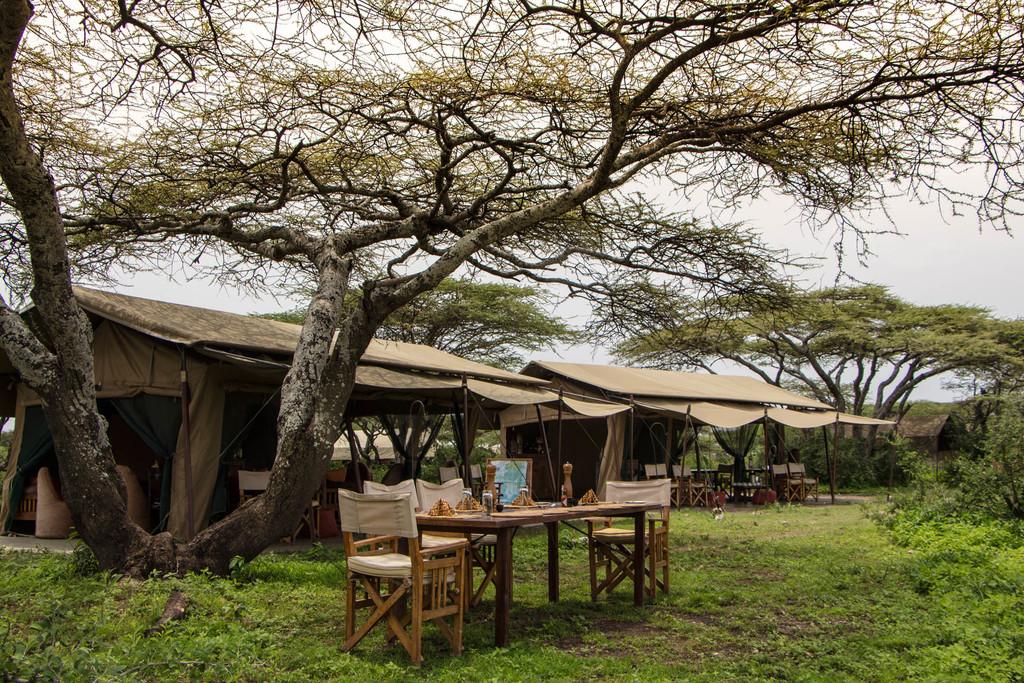 Zelte des Ubuntu Camp in Tansania | Abendsonne Afrika