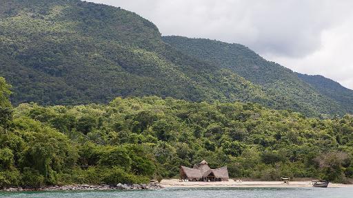 Wildlife Paradise - Exklusive Flugsafari nach Katavi und Mahale | Abendsonne Afrika