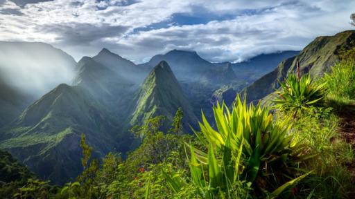 Die bunte Vielfalt La Réunions | Abendsonne Afrika