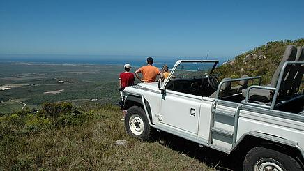 Naturfahrt im Grootbos Farm & Nature Reserve in Südafrika | Abendsonne Afrika