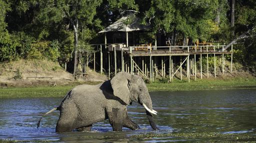 Best of Sambia | Abendsonne Afrika