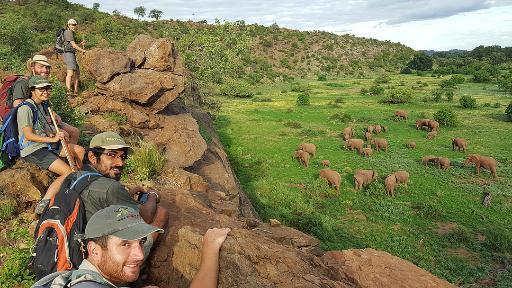 EcoTraining | Abendsonne Afrika